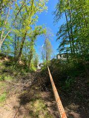 Baumfällung Baumerhaltung Sturmschaden Baumpflege Wald