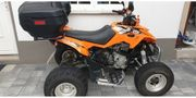 Arctic Cat DVX 300 HU