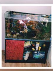 Aquarium 200 l m Unterschrank