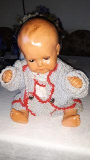 Schildkröt Puppe 35