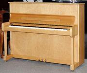 Klavier Yamaha P 121 N