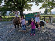 Kindergeburtstag Reiten Ferienprogramm