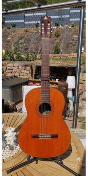 Takeharu Konzert Akustik Gitarre