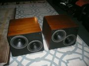 Audio Subwoffer Vintage Nestorovic Labs