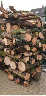 Brennholz Eschenholz in Meterstücke