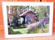 Preis gesenkt Wandbild hochwertiger Foto-Druck