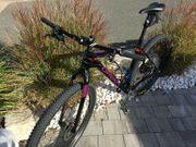 Mountainbike ALMA ORBEA Rahmen XL