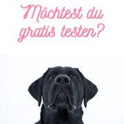 Testpaket hochwertiges Hundefutter