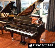 Traum Instrument von Bösendorfer Konzertflügel