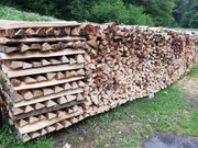 Brennholz - Weichholz - Hartholz