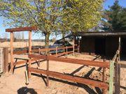 Große Pferdebox mit paddock an