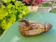 Originalalte italienische Lockente aus Venedig -