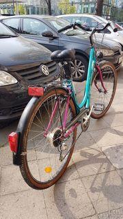 Fahrrad Hollandrad 28 RETRO Damenrad