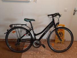 Damen Markenfahrrad in Dornbirn Damen Fahrräder kaufen und