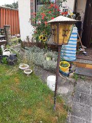 zwei Gärten zur Pacht in