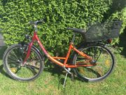 Pegasus Fahrrad 24 Zoll 3