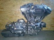 Original Harley Davidson Screaming Eagle