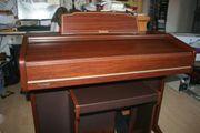 Liebhaber Orgel Technics Orgel SX-E8