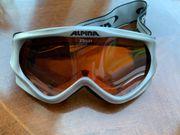 Alpina Ski- und Snowboadbrille für