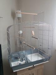Vogelkäfig neuwertig Sittichkäfig mit Ausflug