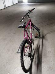 Eurostar Damen Fahrrad 28 zoll
