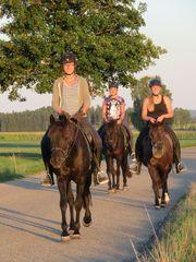 Reiterferien 2021 für Mädchen ab