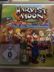 Nintendo DS Harvest Moon