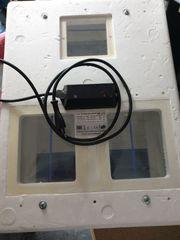 Brutmaschine Modell 3000 Inkubator