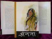 Andschana - die Geschichte eines indischen