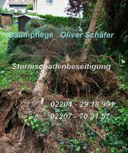 Sturm Schaden Beseitigung Notdienst Notfällung