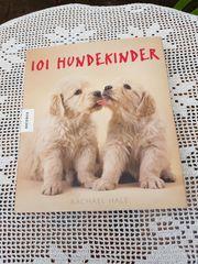 101 Hundekinder - hochwertiges Buch im