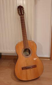 Akustik Gitarre Pro Arte GC-100