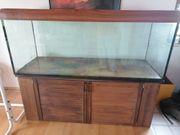 Verkaufe 580L Aquarium