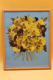 Bild mit Strohblumen Trockenblumen 31x25cm