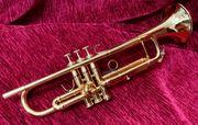 Adams A5 Trompete Trippl Gigbag