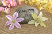 Harmonie für Körper Geist und