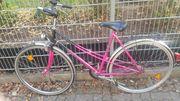 36er rotes Damensportrad