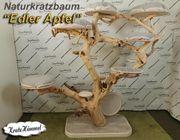 Natur- Kratzbaum Edler Apfel das