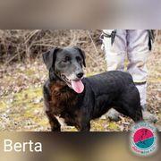 Berta - die älteren übersieht man