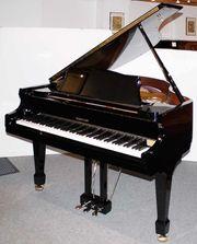 Flügel Klavier W Hoffmann V-158
