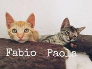 Paola und Fabio einfach zum