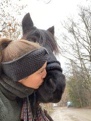 Reitbeteiligung gesucht - Reiter sucht Pferd
