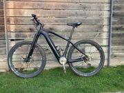 E-Bike E-Mountainbike ToroRider Hardtail