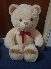 Teddy neu