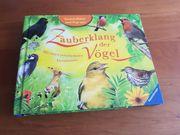 Zauberklang der Vögel - Popup Buch