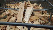 Brennholz Anfeuerholz -Buche