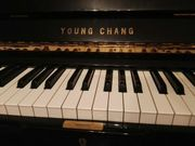 Young Chang Klavier Modell 131