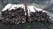 Verkaufe Brennholz Birke zum SUPERPREIS