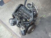 VW Bus T4 Turbodieselmotor 1