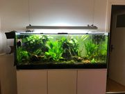 Aquarien Leuchte 120-150 cm 6xT5